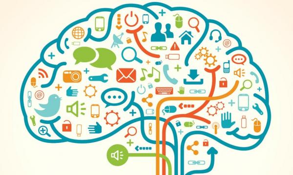 creative brains sciences cognitives